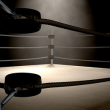 Photo of Boxing Ring